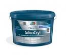 Diesco SilicoCryl, Diessner